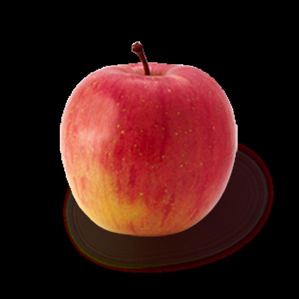 Apples - Fuji - each
