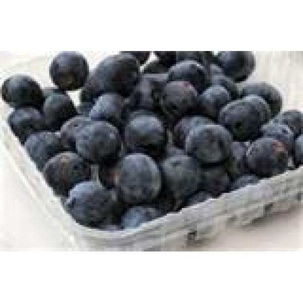 Blueberries - punnet