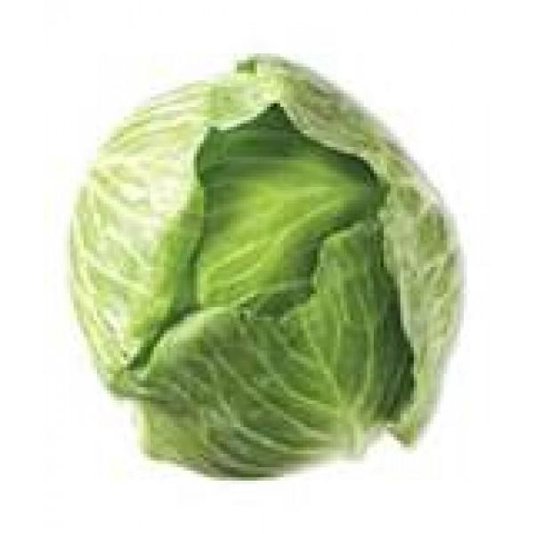 Cabbage - Green - per head