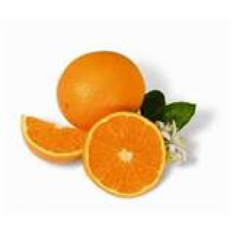 Oranges - Valencia - per kg